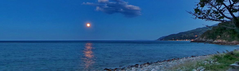 Visit plimari tavern in Analipsi beach